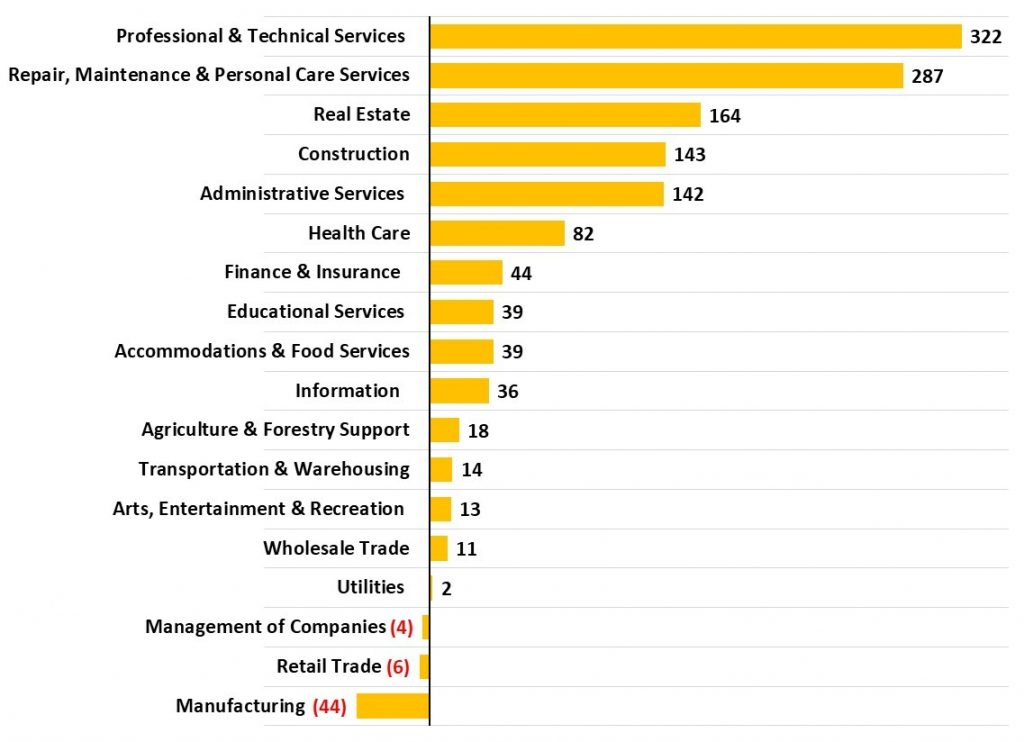 2014 to 2019 Asheville Metro Net Change Number of Business Establishments Employing Fewer Than Ten Persons by Industry_JPS Asheville Accounting CPA Firm
